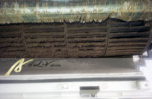dirty-mold-aircon-wash